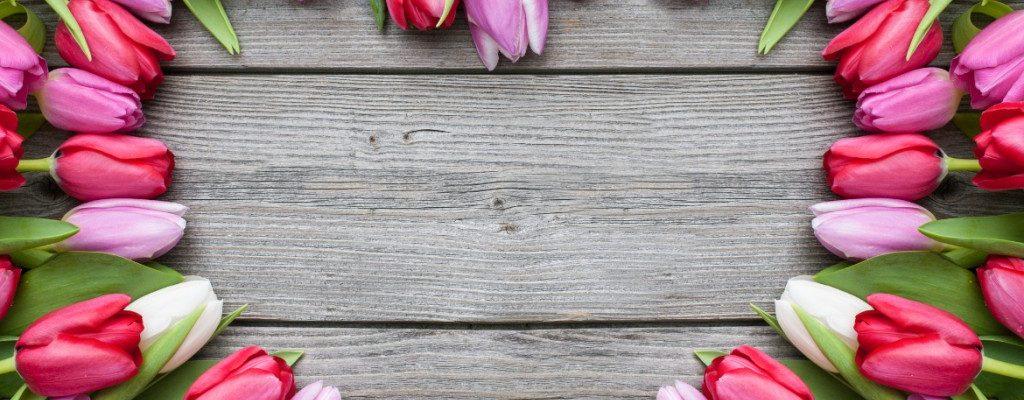 Frühlingsaktionspakete